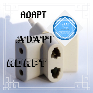 Adaptive Market Hypothesis